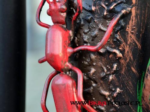 Ozdobna kuta mrówka R-81