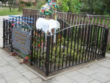 Ozdobne ogrodzenie z kwiatami